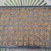 【タマネギのセルトレイ育苗】晩成品種(ラッキー)の種まき