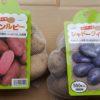 今年栽培するジャガイモ買いました|浴光催芽|カラーポテト