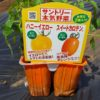 ミニトマトの植え付け|アイコ、ハニーイエロー、スイートカロテン