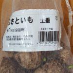 サトイモとショウガの植え付け 一緒に植える