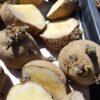 【市民農園】ジャガイモの植え付け キタアカリ、メークイン、十勝こがね